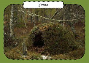 gawra-1